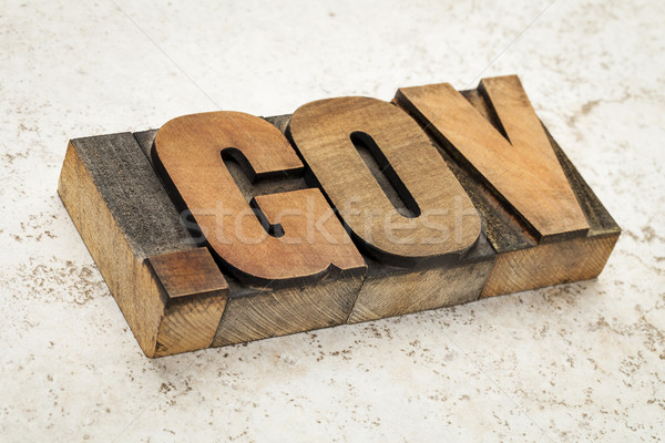 dot gov internet domain Stock photo © PixelsAway