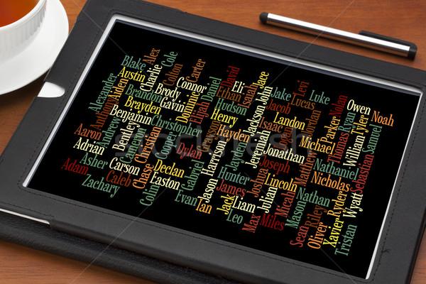 Populair baby jongen 2012 USA woordwolk Stockfoto © PixelsAway