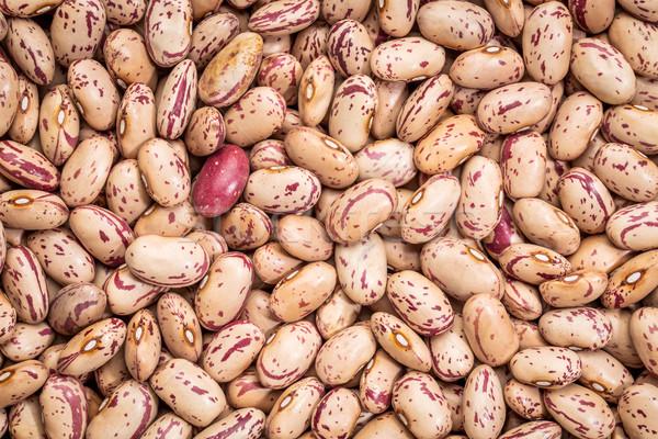 crimson cranberry bean background Stock photo © PixelsAway