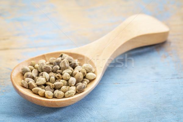 hemp seeds on wooden spoon Stock photo © PixelsAway