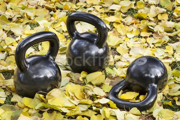 iron  kettlebells outdoors Stock photo © PixelsAway