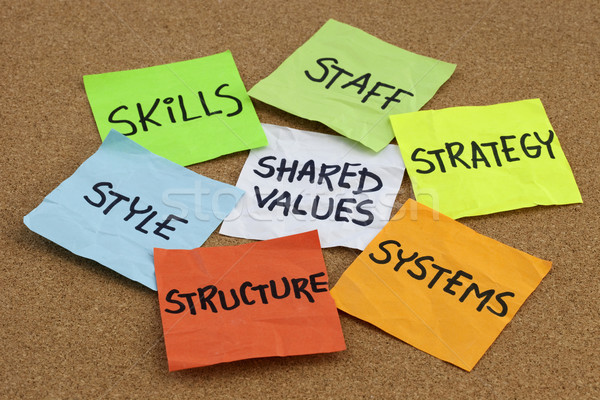 organizational culture, analysis and development concept Stock photo © PixelsAway