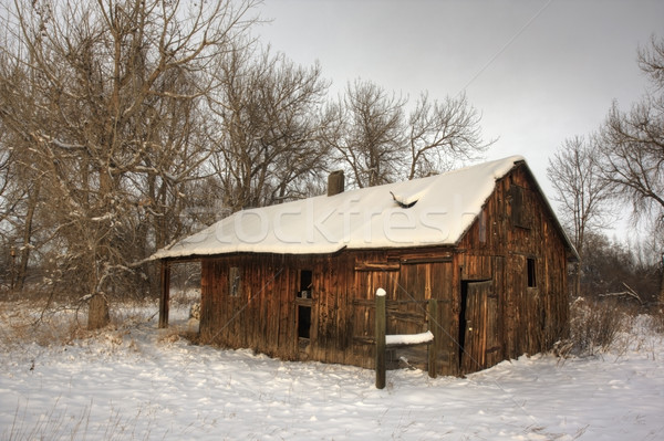 old farm building in winter scenery Stock photo © PixelsAway