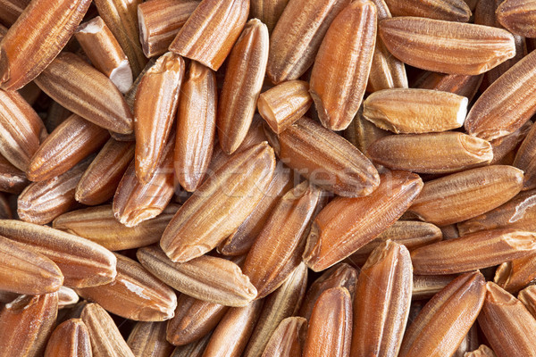 brown rice grain macro Stock photo © PixelsAway
