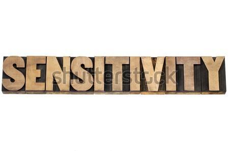 sensitivity word in wood type Stock photo © PixelsAway