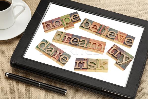 Motivációs szófelhő álom remény kockázat szett Stock fotó © PixelsAway