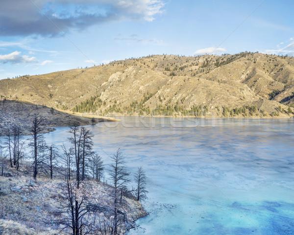 Sosny drzew wildfire brzegu zamrożone marynarz Zdjęcia stock © PixelsAway