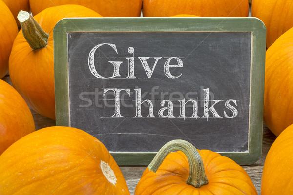Ad köszönet kifejezés hálaadás szavak fehér Stock fotó © PixelsAway