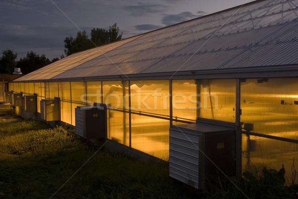 Szklarnia noc długo badań kampus Zdjęcia stock © PixelsAway