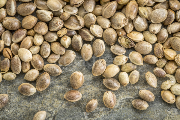 unshelled hemp seeds background Stock photo © PixelsAway