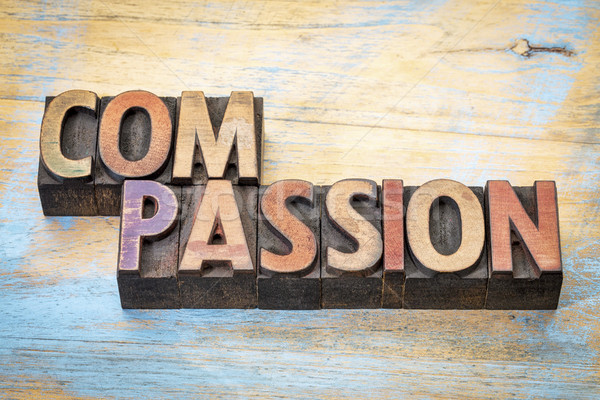 compassion word abstract in wood type Stock photo © PixelsAway
