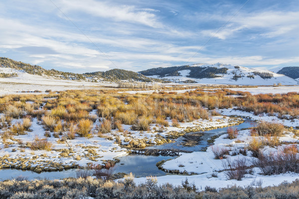 Castoro palude montagna inverno settentrionale parco Foto d'archivio © PixelsAway