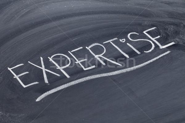 Szakértelem szó iskolatábla fehér kréta kézírás Stock fotó © PixelsAway