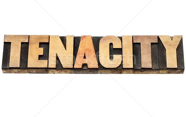 tenacity word in wood type Stock photo © PixelsAway