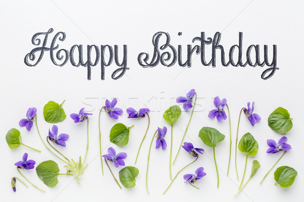 Happy birthday greetings with viola flowers Stock photo © PixelsAway