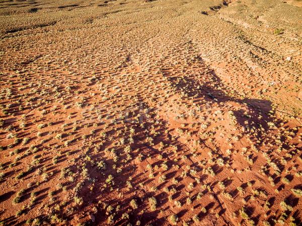 desert aerial view at sunrise Stock photo © PixelsAway