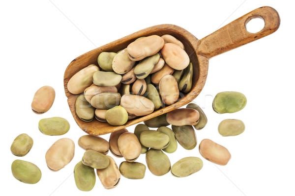 fava (broad) beans Stock photo © PixelsAway
