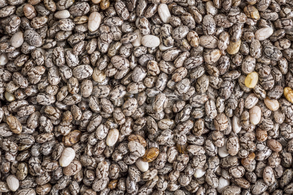 chia seeds life-size macro Stock photo © PixelsAway