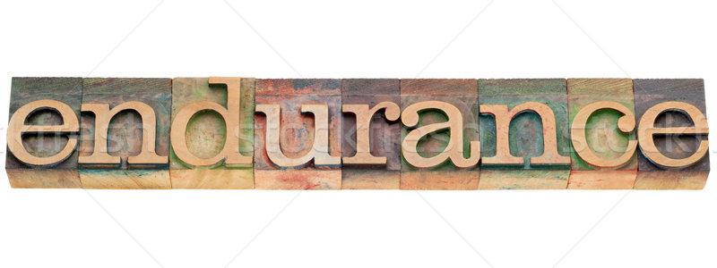 Wytrzymałość słowo typu odizolowany vintage Zdjęcia stock © PixelsAway