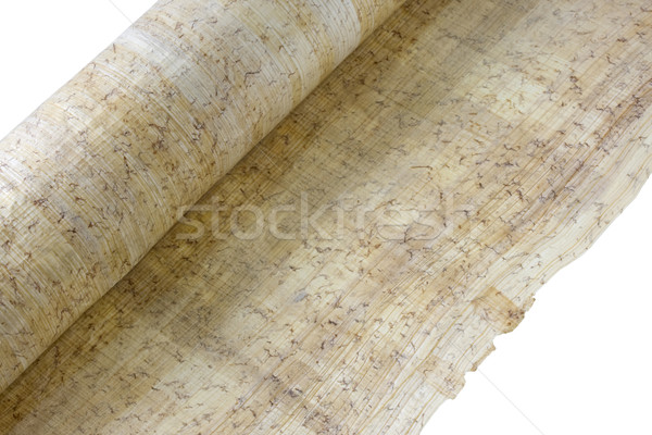 Rolar papiro papel isolado branco folha Foto stock © PixelsAway
