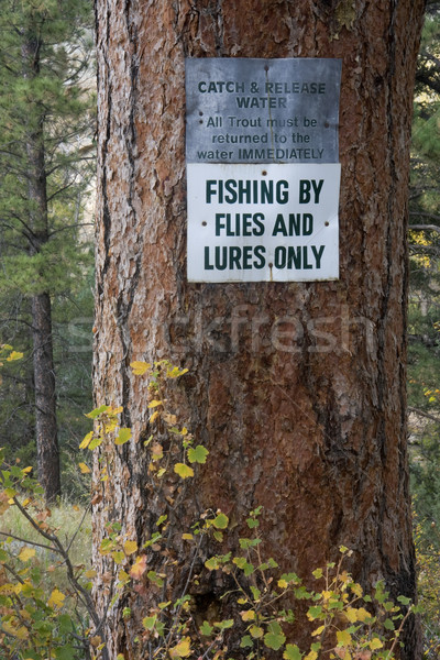catch and release water sign near trout river Stock photo © PixelsAway