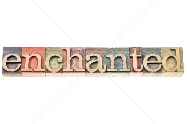 enchanted word typography Stock photo © PixelsAway