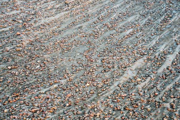 river gravelbar texture and pattern Stock photo © PixelsAway