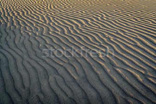 Sand tune Textur Muster Sanddüne groß Stock foto © PixelsAway