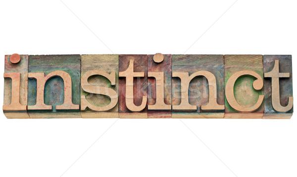 ストックフォト: 本能 · 言葉 · タイプ · 孤立した · 文字