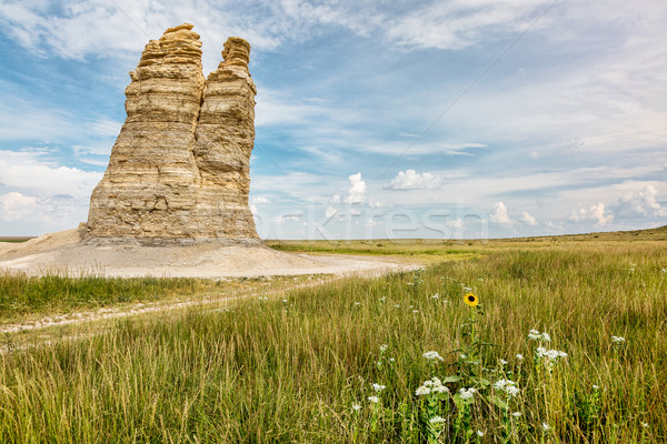 Castle Rock in Kansas prairie Stock photo © PixelsAway