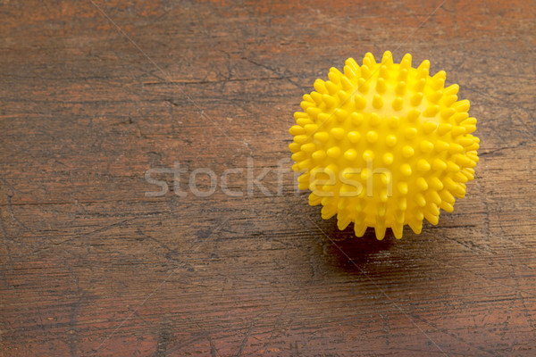 spiky self massage ball Stock photo © PixelsAway
