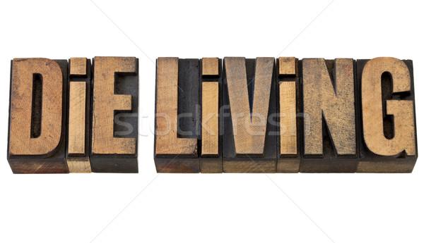 die living advice in wood type Stock photo © PixelsAway