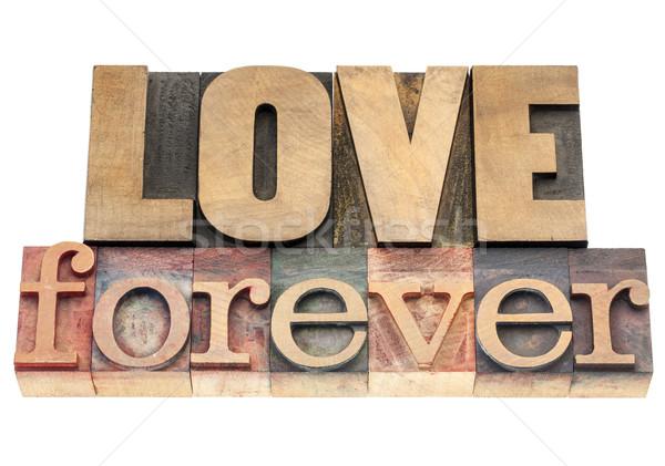 Liefde voor altijd hout type geïsoleerd tekst Stockfoto © PixelsAway