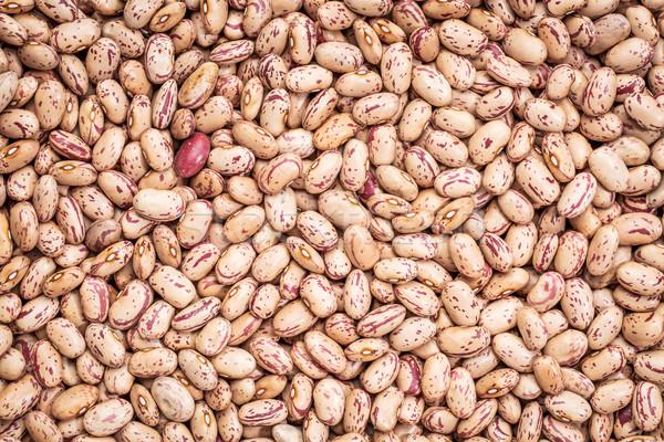 クランベリー 豆 背景テクスチャ 豆 類似した ストックフォト © PixelsAway