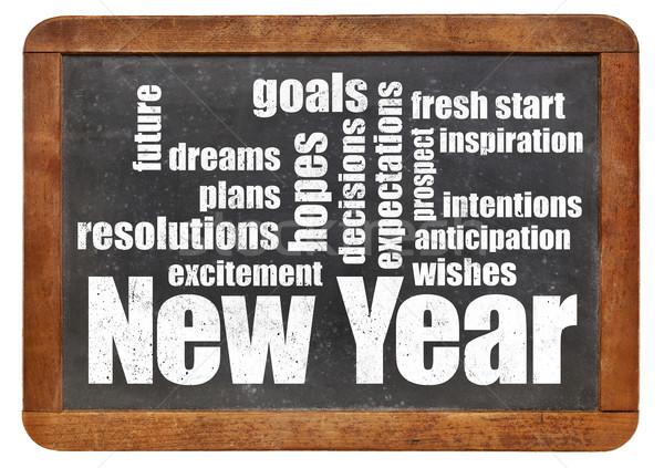 Nowy rok plany oczekiwania chmura słowo vintage Zdjęcia stock © PixelsAway