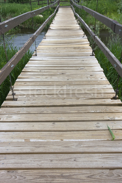 Stock photo: suspended footbridge over a river