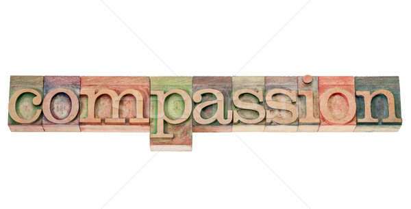 compassion word in wood type Stock photo © PixelsAway