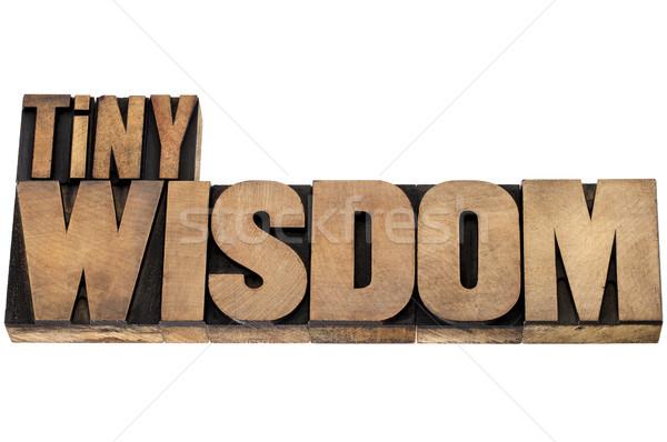 Wijsheid hout type geïsoleerd vintage Stockfoto © PixelsAway