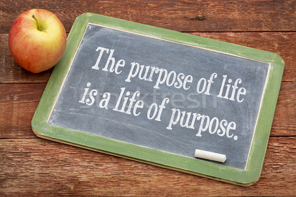 the purpose of life concept Stock photo © PixelsAway
