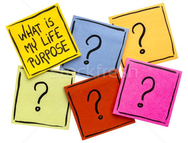 Qué mi vida propósito escritura aislado Foto stock © PixelsAway