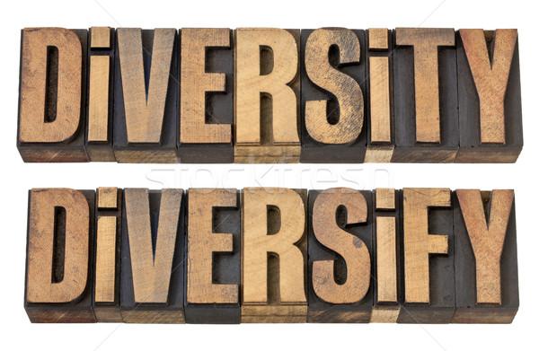 diversity and diversify words in wood type Stock photo © PixelsAway
