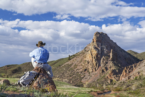 loneliness in mountains Stock photo © PixelsAway