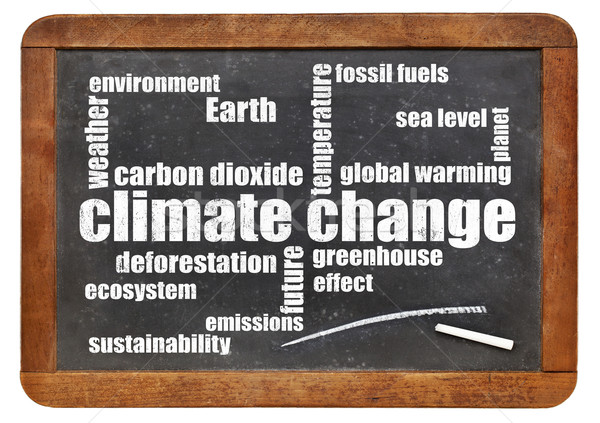 climate change word cloud on blackboard Stock photo © PixelsAway
