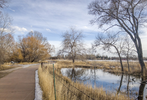 recreational and commuting bike trail along the Poudre River in Fort Collins, Colorado, typical wint Stock photo © PixelsAway
