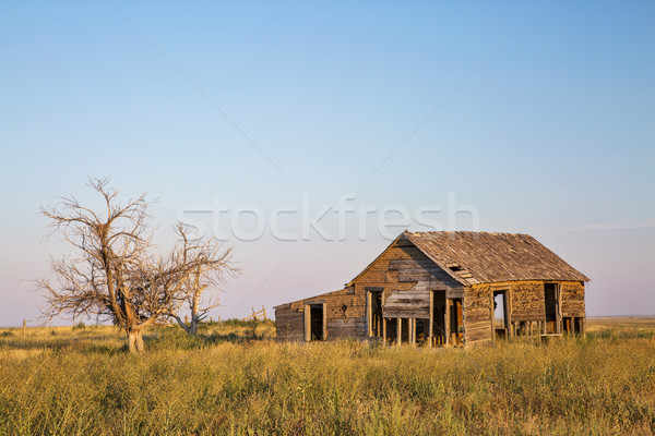 old homestead on prairie Stock photo © PixelsAway