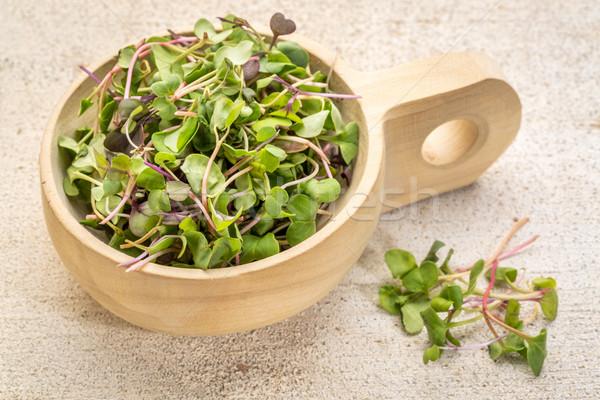 Organikus mikro pázsit mustár gyógynövények fából készült Stock fotó © PixelsAway