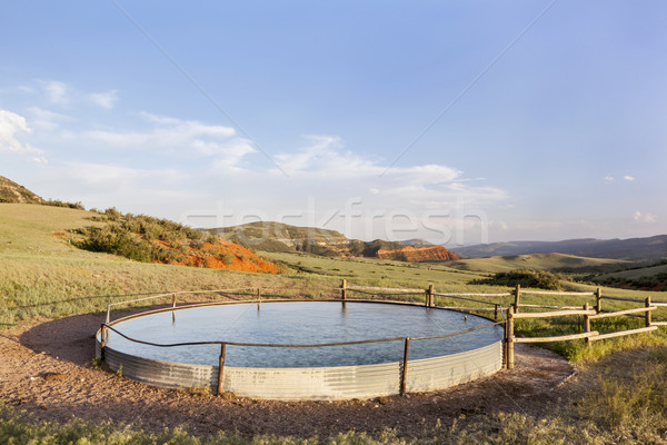 cattle water tank Stock photo © PixelsAway