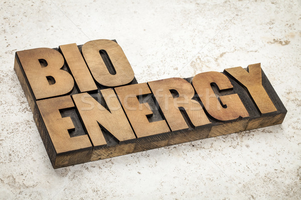 Bioenergía palabra madera tipo vintage Foto stock © PixelsAway