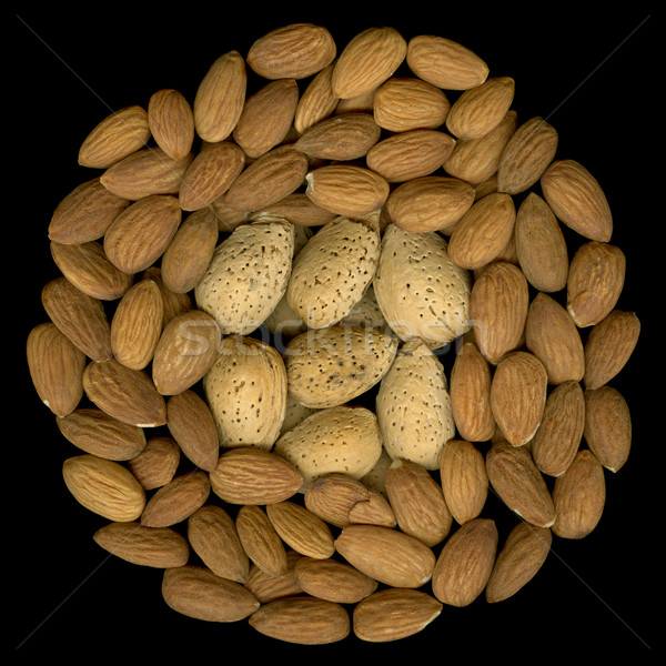 shelled and unshelled almonds Stock photo © PixelsAway