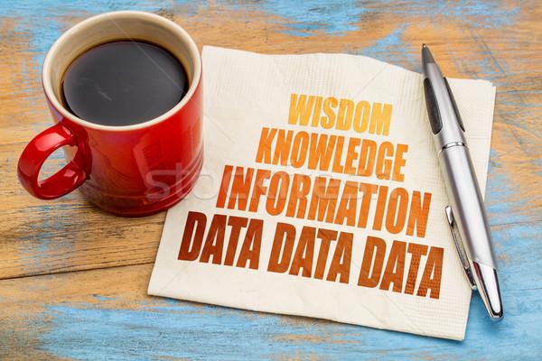データ 情報 知識 知恵 言葉 抽象的な ストックフォト © PixelsAway